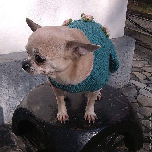 """Одежда для собак, ручной работы. Ярмарка Мастеров - ручная работа. Купить Платье для собачки """"Фантазия"""". Handmade. Морская волна, йорк"""