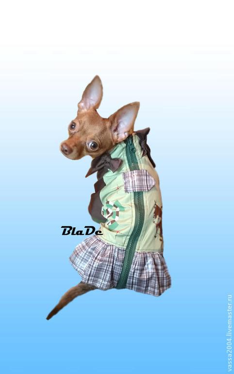 """Одежда для собак, ручной работы. Ярмарка Мастеров - ручная работа. Купить Дождевик """" Милитари Girl """". Handmade. Разноцветный"""