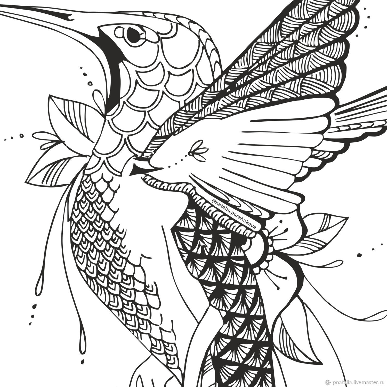 футболка раскраска колибри
