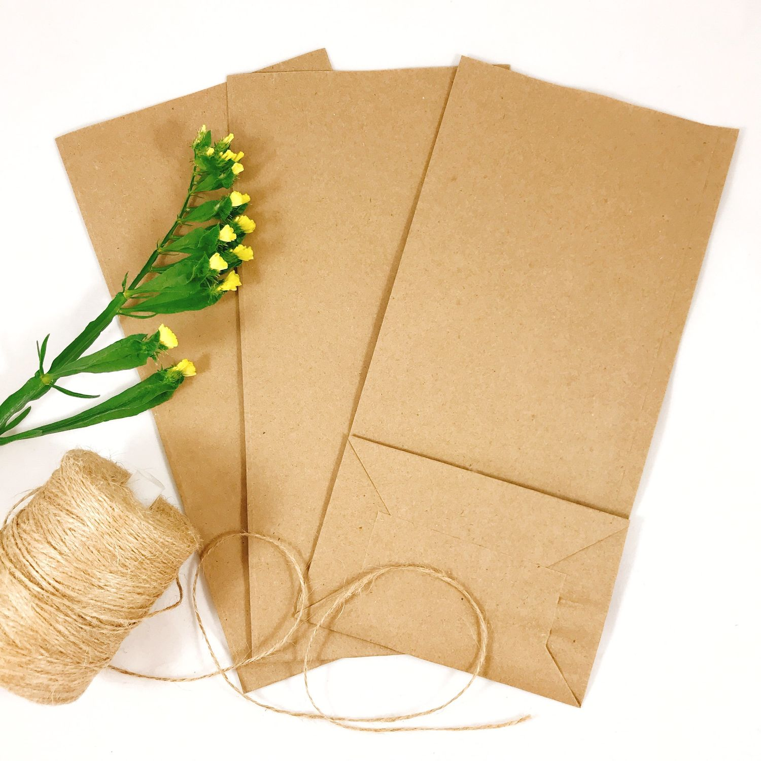 Package packaging craft, Packages, Izhevsk,  Фото №1
