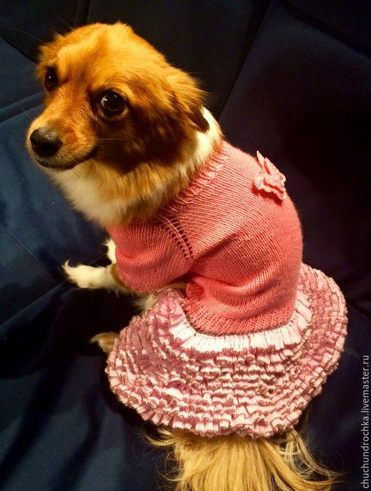 Одежда для собак, ручной работы. Ярмарка Мастеров - ручная работа. Купить Платье Розовые мечты. Handmade. Розовый, вязание на заказ