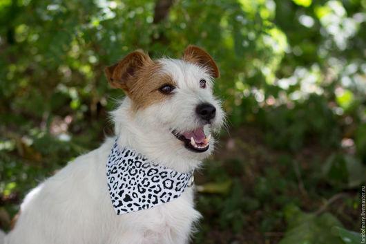 Аксессуары для собак, ручной работы. Ярмарка Мастеров - ручная работа. Купить Ошейник-бандана для собаки. Handmade. Чёрно-белый