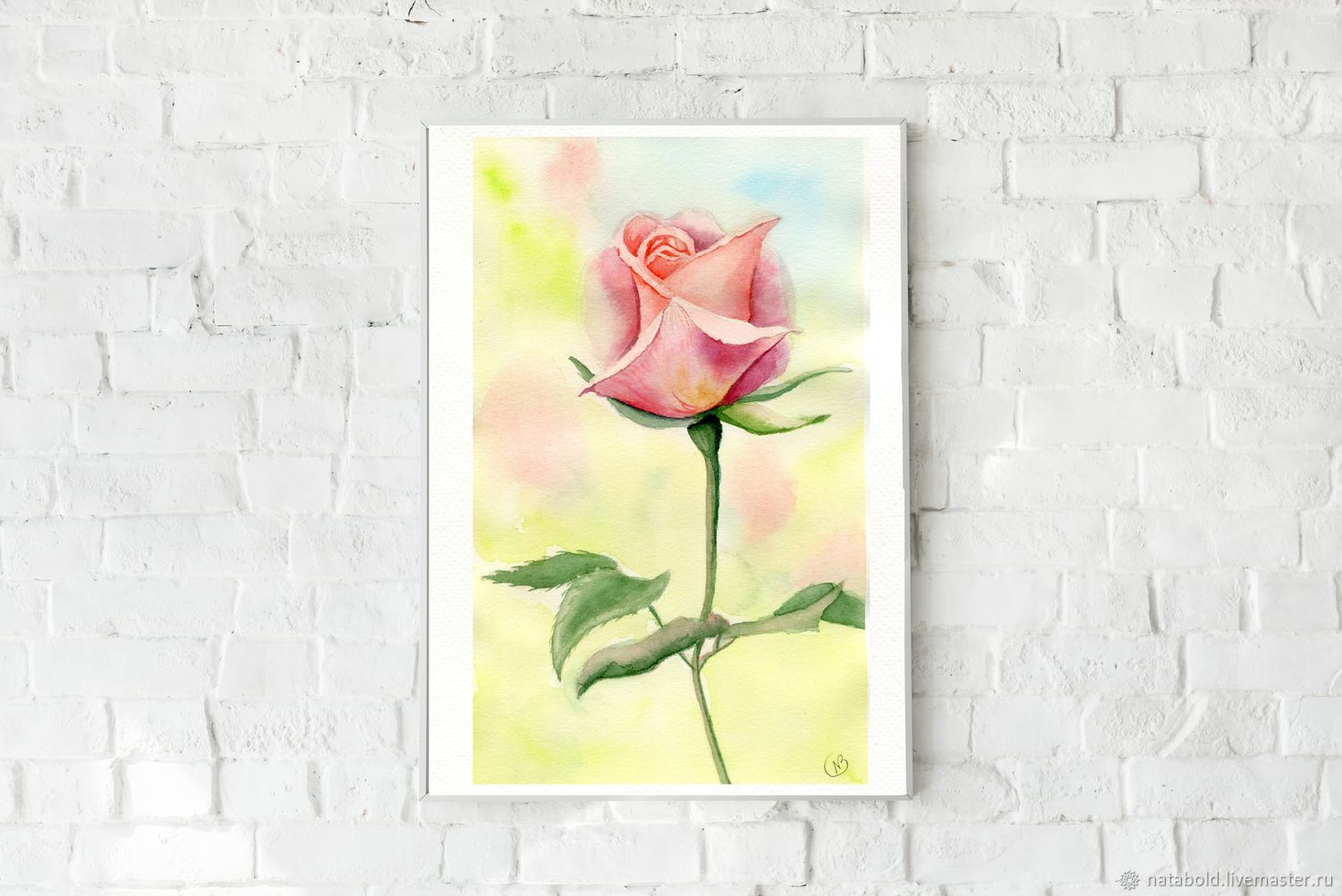 Watercolor rose in the garden, Pictures, Rostov-on-Don,  Фото №1