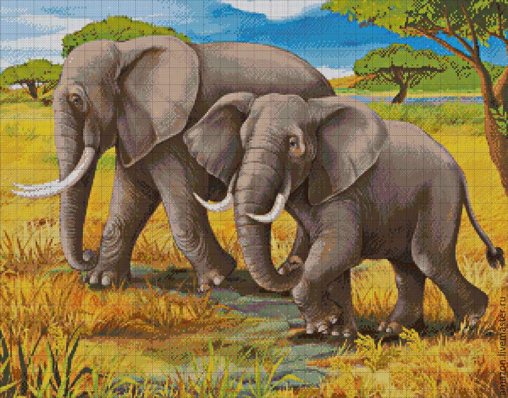 Картина слоны вышивка