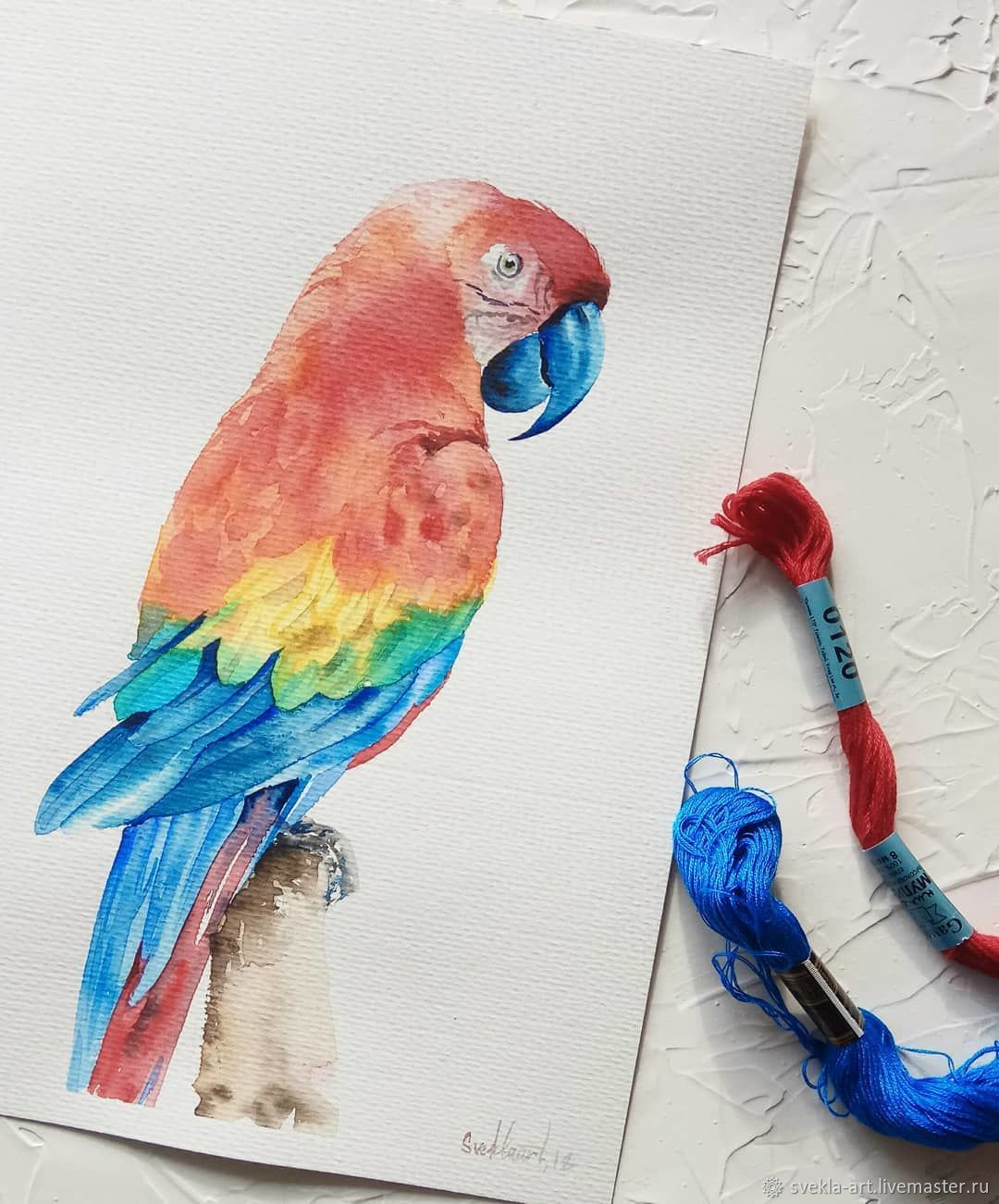 """Картина акварелью """"Попугай"""", Pictures, Kansk,  Фото №1"""