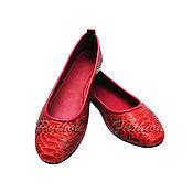 Обувь ручной работы handmade. Livemaster - original item Ballet flats from Python BRIDGIT. Handmade.