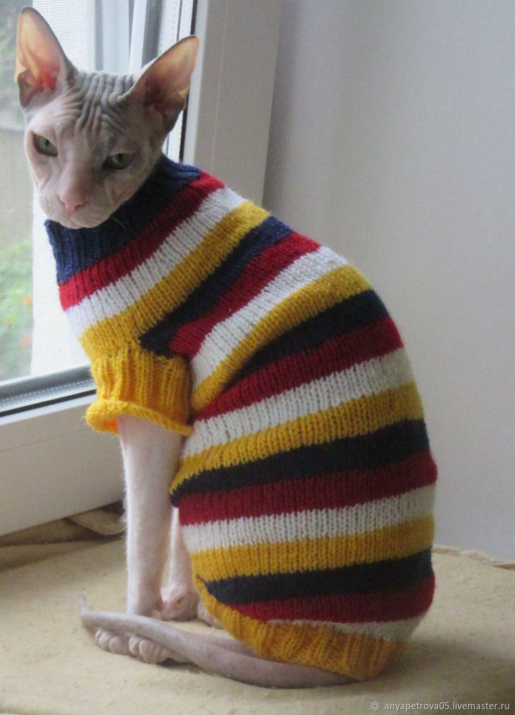 Полосатый свитер для животных, Одежда для кошек, Клин, Фото №1